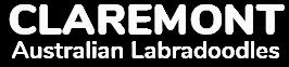Claremont Australian Labradoodles